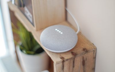 Google Home Voice results showing Local Services ads