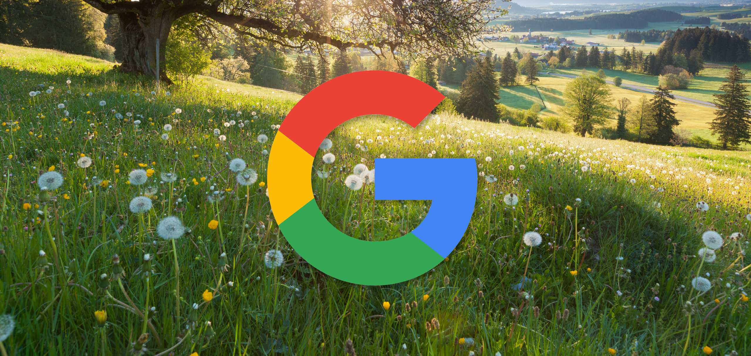 Google's June 2019 Core Update – preannounced