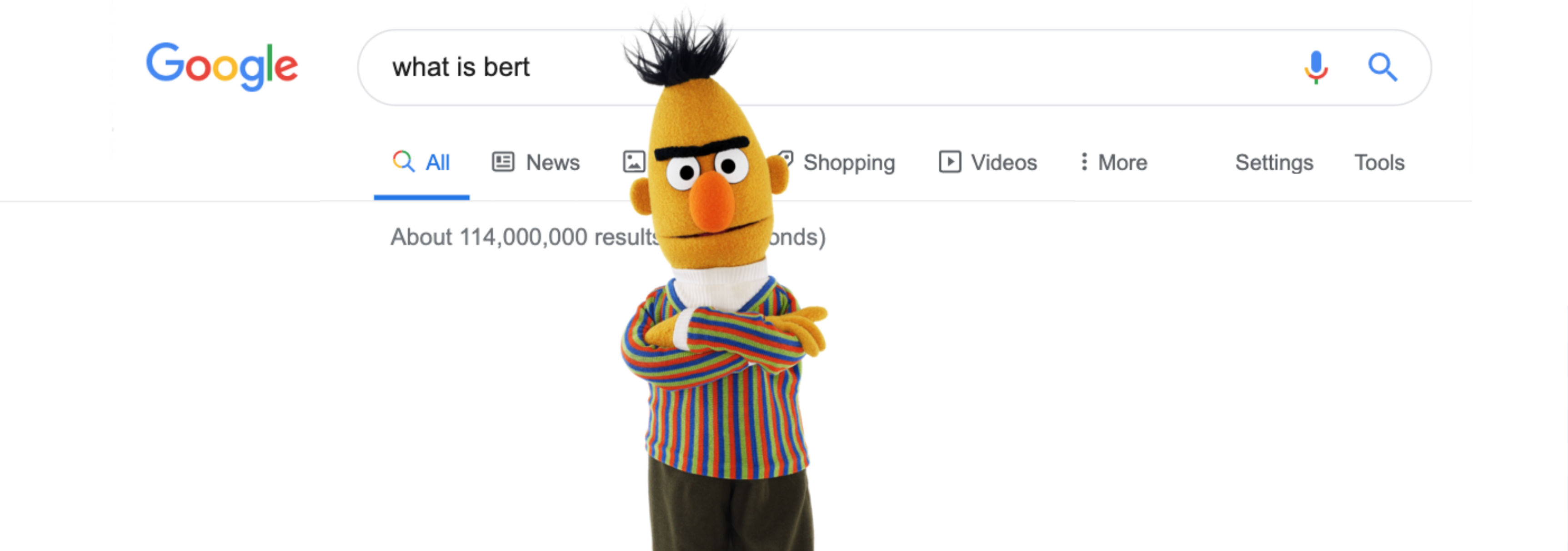 What Is BERT? NEW Google Algorithm Update
