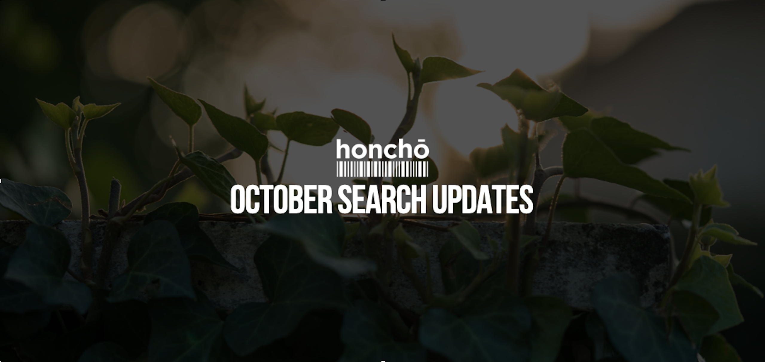 October Search Updates