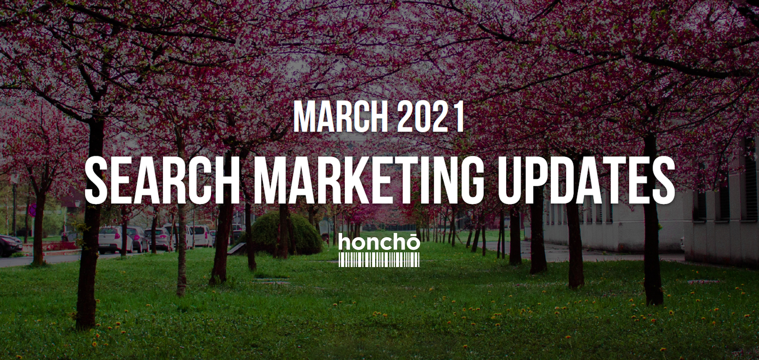 March Search Updates 2021