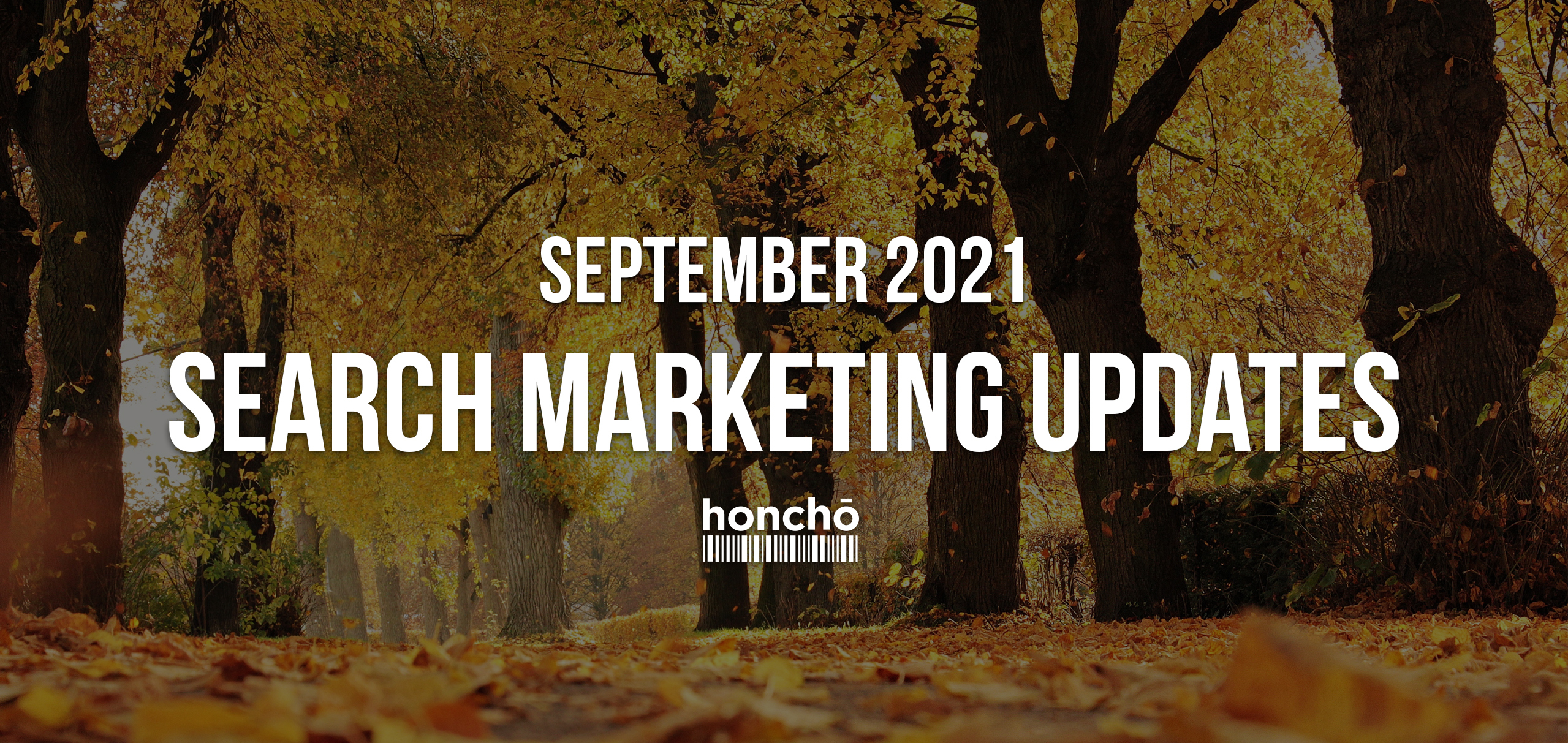 Search Updates September 2021